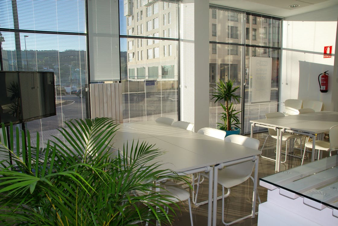 Unknown Tips How Your Office Can Go Green Within 5 Days