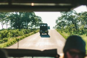 5 Of The Top Experiences In Uganda